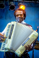 BuckWheat Performing at the 2014 Zydeco Extravaganza.